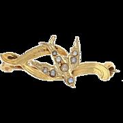Edwardian Bird Pin - 14k Yellow Gold Pearls Antique Jewelry