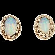 Opal Stud Earrings - 14k Yellow Gold Rope Border Pierced .32ctw