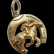 14k Gold Horse Shoe Charm/Pendant