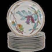 Royal Worcester Dessert Plates