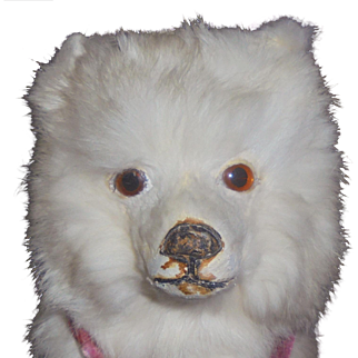 """Sweet 9"""" Antique Spitz Samoyed Candy Container Doll Companion"""