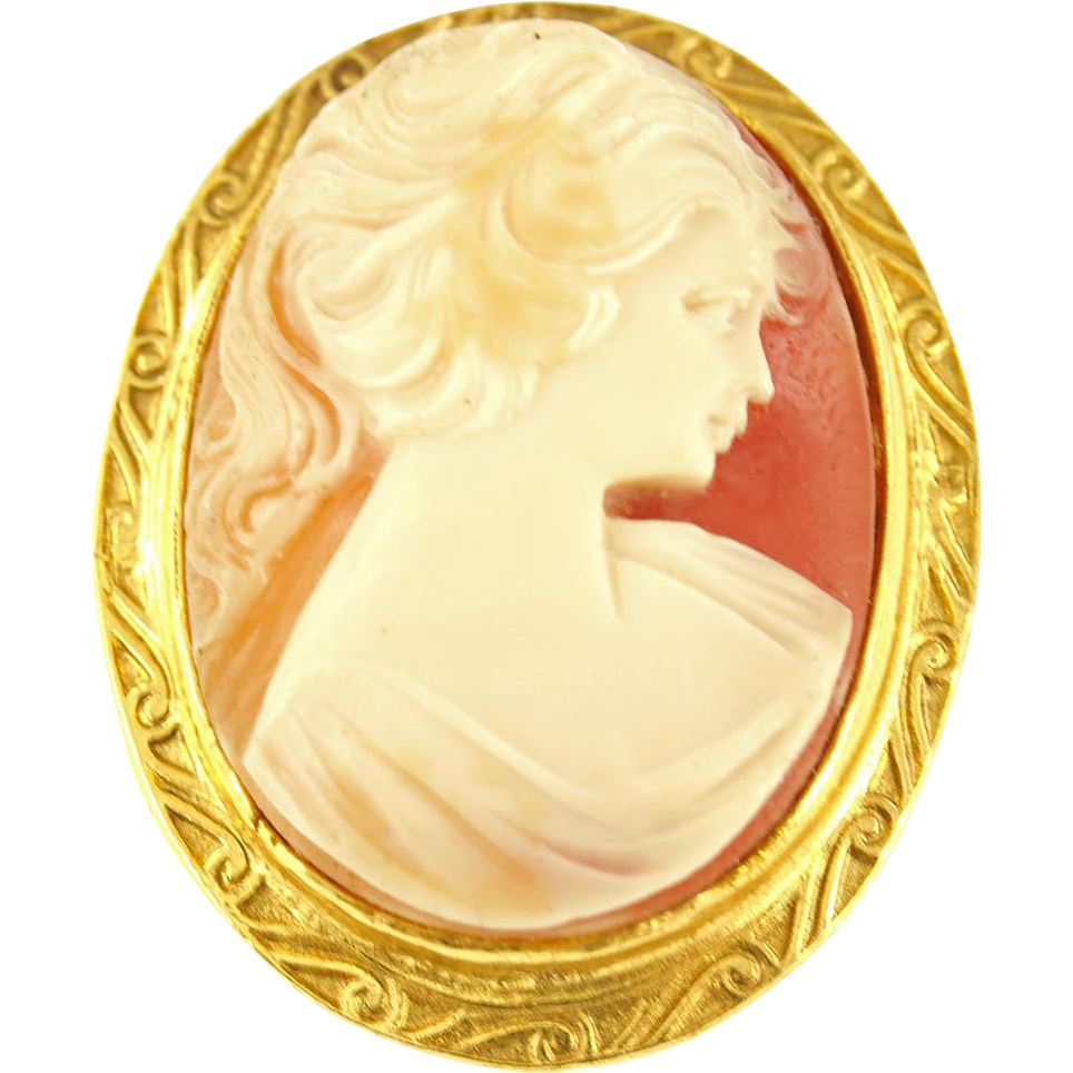 Vintage Victorian Style Resin Cameo Pin