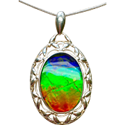 Traditional Ammolite Pendant - Collector's Piece