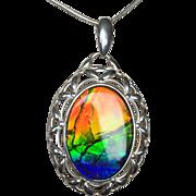 Beautiful 3 Color Ammolite Pendant