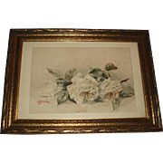 Beautiful Antique White Roses Watercolor Painting Signed Bond