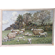 Precious Old Pastoral Watercolor Painting of Sheep and Lambs, H. Stanley Brown