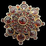 Bohemian Garnet Rosette Pin