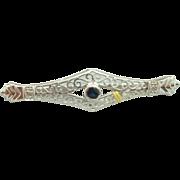 10 Karat Fancy Round Blue Sapphire Brooch