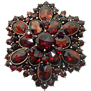 Bohemian Garnet Pin Star / Snowflake shape