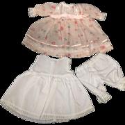 Cotton Voile Dress Petticoat & Drawers