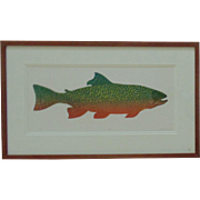 "Vintage Fish Lithograph ""Native"" Trout Signed & Numbered 100/300 Fishing Litho Print"