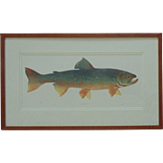 "Vintage Fish Lithograph ""Sunapee Trout"" Signed & Numbered 194/300 Fishing Litho Print"