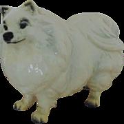 Rare LARGE Goebel Pomeranian Dog Statue Figure Figurine Vintage Blanc de Chine West Germany German