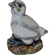Vintage Boehm Baby Peregrine Falcon Porcelain Figurine England