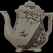 19th c. Antique Teapot Tea Pot Brown Transferware Aesthetic Eastlake Victorian Era Rangoon Emery Burslem England English Birds & Flowers