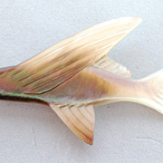 Vintage Mother of Pearl Fish Pin
