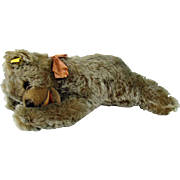 Steiff Floppy Zotty Stuffed Sleeping Bear - 1954