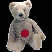 Steiff Musical Mohair Teddy Bear - 1950's