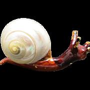 Snail pin Real shell Enamel vintage MOP