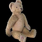 "Antique Large 18"" German Steiff Teddy Bear Doll c1905"