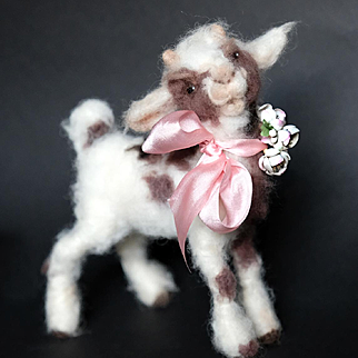 Wonderful Small Goat