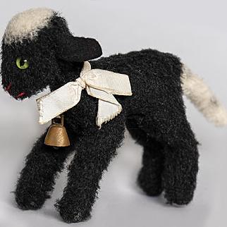Wonderful Little Black Lamb