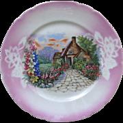 Vintage Victoria Plate Cottage Schmidt Czech Lustre