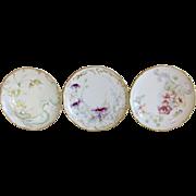 Antique Limoges Flowers Plate Set of 3 Haviland Floral