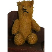 Small Miniature Glass Eye Teddy Bear with Jointed Arms and Legs