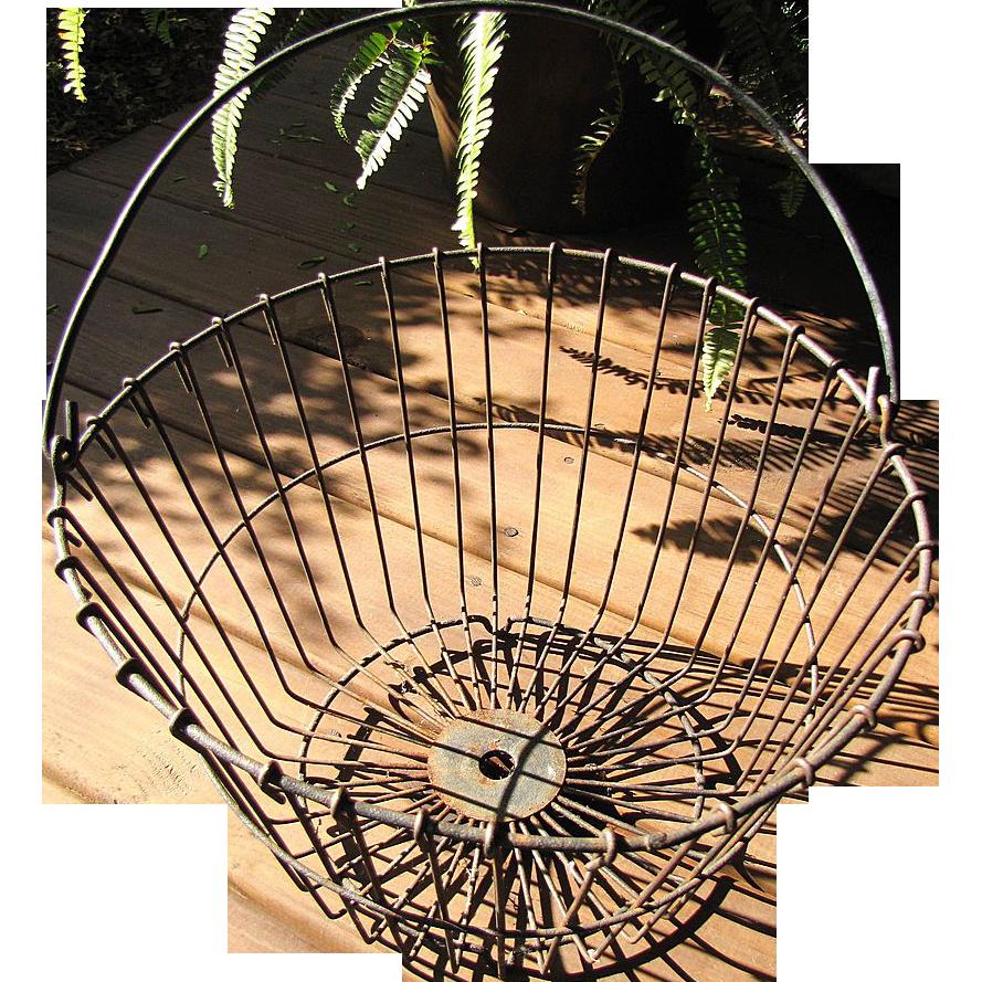 Fabulous 1900's Large Wire Gathering Basket