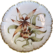 Antique1882 Haviland Limoges Hand Painted Cabinet Plate