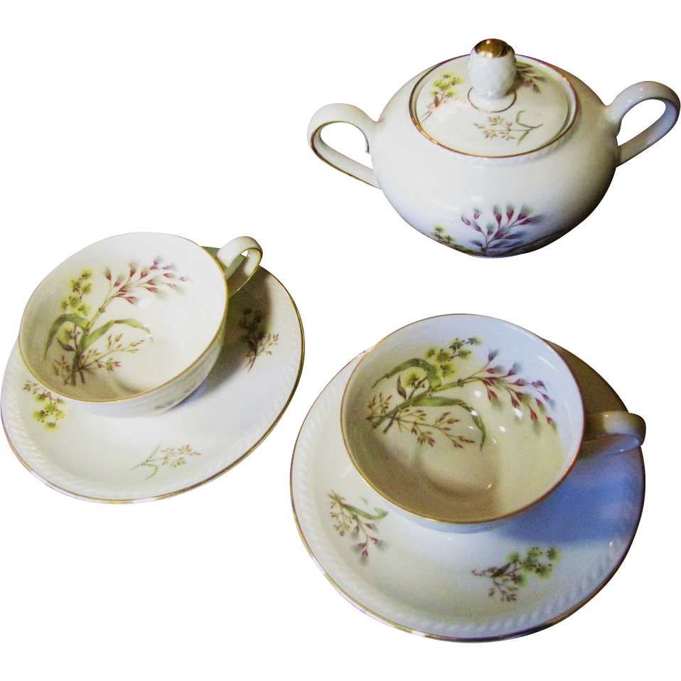 Nice Pair of Demitasse and a Covered Sugar by Winterling Bavaria, Pattern No 49