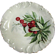 Beautiful Hand Painted Limoges Cherry Design Wall or Cabinet Plate
