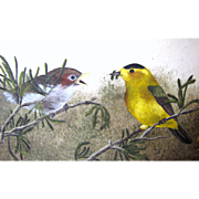 Charming Acrylic on Board of Two Warbler Birds, Kaye Smith