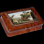 Tivoli micromosaic snuff box