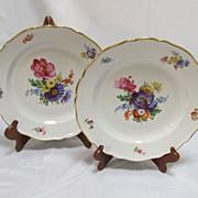 Pair  Meissen Floral  Plates