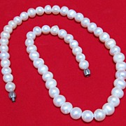 Lovely Cultured Pearl Choker Necklace