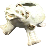 Chinese Chan Chu Water Dropper Toad