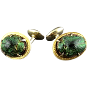Vintage Egyptian Revival Natural Scarab Beetle Cufflinks