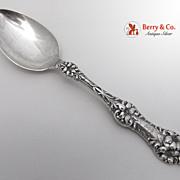 Old Orange Blossom Dessert or Oval Soup Spoon Sterling Silver Alvin 1905
