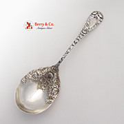 Chrysanthemum Berry Spoon Durgin Sterling Silver 1893