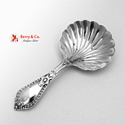 Antique Tea Caddy Spoon Sterling Silver Walker and Hall Sheffield 1903