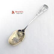 Chrysanthemum Ice Cream 6 piece Spoons Sterling Silver Gorham 1885