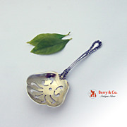 Chantilly Candy Nut Spoon Sterling Silver Gorham 1895