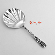 Baltimore Rose Tea Caddy Spoon Sterling Silver 1905 No Monogram