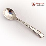 Ornate Master Salt Spoon Scrolls Webster Sterling Silver