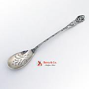 Holly Olive Spoon Watson 1900 Sterling Silver