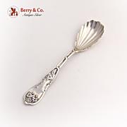 Grape Sugar Spoon Wood and Hughes Coin Silver