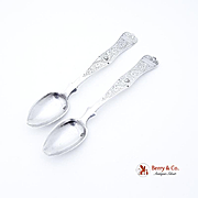 Aesthetic Sterling Silver Teaspoons 1900 Middle East