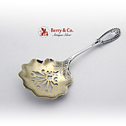 Brite Cut Bon Bon Candy Nut Spoon Sterling Silver Fessenden 1900